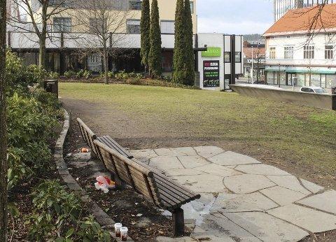 En 35 år gammel porsgrunnsmann gikk i fjor sommer til angrep på tre personer i parken mellom Elixia og Hammondgården. Nå er han dømt til fengsel i 10 måneder.
