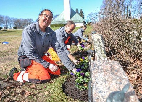 TRIVES: Agnieszka Mochocka, Eirik Aas Hauger og Laila Lysnes trives i jobben med å stelle graver ved 10 kirkegårder i Sandefjord, som her på Ekeberg.