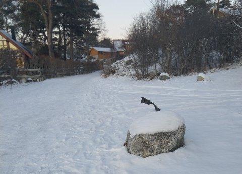 PÅ UTSTILLING: Dette synet møter turgåere på Kyststien på Vesterøya.
