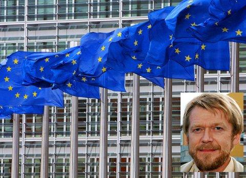 Som ikke-medlem av EU, vil alle «pakker» og «direktiver» vi får gjennom EØS-avtalen ikke være skreddersydde etter norske behov og ønsker, påpeker Moren Swlnes.