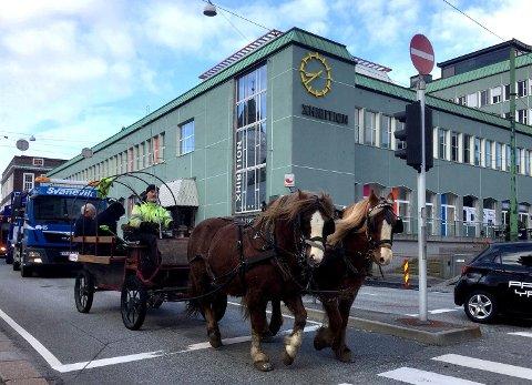 – Jeg kan ikke skjønne hvorfor det skal være så vanskelig å utvikle akkurat denne byen, når de får det til alle andre steder i Europa, sier hesteeier Trond Bergsvåg.