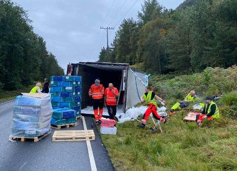 30 TONN FISK: Traileren som velta på E39 i Høyanger var lasta med 30 tonn laks. Det førte til eit litt annleis oppdrag for bilbergarane.