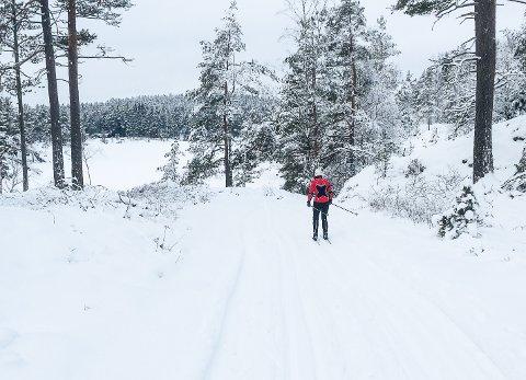 VINTERIDYLL: Det er gode forhold og vakker natur i skiløypa mot vernesona og Kvislerseter i Aremark.