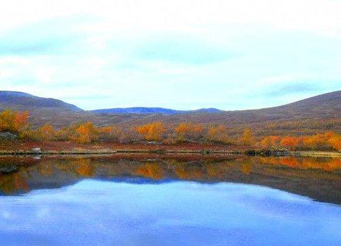 Vestre tiplingen: Også i området ved Tiplingan i Grane har Statskog utleiehytte.