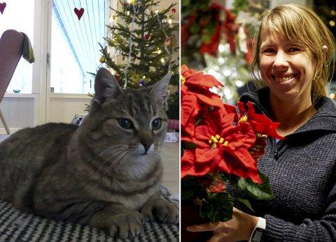 SELSKAP: For de aller fleste av oss er julen ensbetydende med gode stunder sammen med familien og tilhørende dyr, som katten Slasken. Men ikke alle har det sånn, skriver redaktør Anniken Renslo Sandvik.