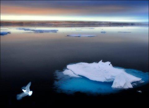 «Polarkveld» av Atle Helland.