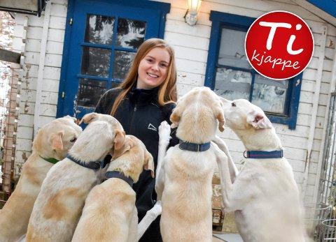 Hundene er viktige: For Katrine Fugleberg er hundene mer enn noe hun bruker i konkurranse, og det vanker kos på hele flokken ofte.