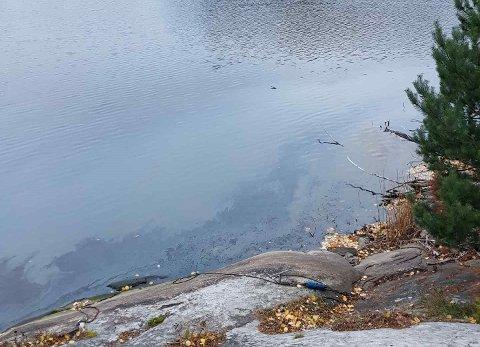 BELTE: Frode Nillsen varslet brannvesenet om dette oljebeltet i Vansjø mandag.