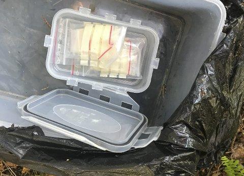 NARKOFUNN: To kvinner på tyttebærtur fant en søppelsekk med plastbokser inni. Inni dem igjen var det må plasposer, med det som sannsynligvis er amfetamin. Foto: Privat