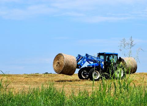 LANDBRUK: Hurum kommune hadde netto driftsutgifter på 1,1 millioner kroner til landbruksbasert næringsutvikling. Røyken kommune hadde pluss i regnskapet. (Illustrasjonsbilde).