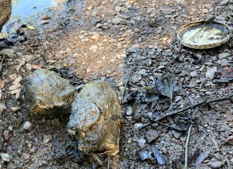 SJOKK-FUNN: Nede til venstre på bildet ser du de to håndgranatene som ble funnet. De var dekket med gjørme da de ble dratt opp av vannet.