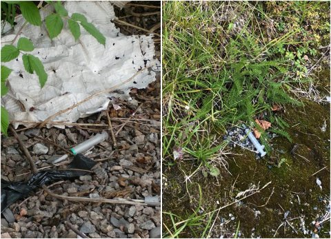 SKOLEVEI: Disse sprøytene ble funnet ved Håndverksveien i Porsgrunn. Flere barn bosatt på Bjørntvedt bruker veien når de skal til og fra Myrene skole.
