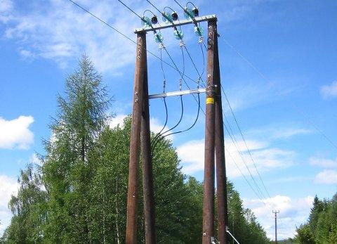 DYR NETTLEIE: Å bygget ut strømnettet er kostbart, og Sør-Aurdal Energi er blant de dyreste på nettleie i landet.
