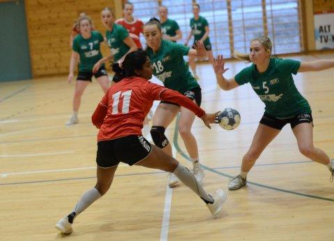 BLIR I ANDRE: Nit-Hak-damene får fortsette i 2. divisjon, og dermed rykker klubbens 2. lag opp til tredje.