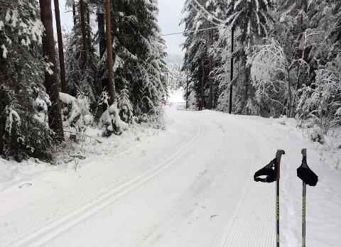 SOM TRIKKESKINNER: Fredag ettermiddag var skisporene på Årbogen i Krokstadelva brøytet vekk – trolig ved hjelp av ATV med plog. Allerede lørdag morgen var skisporene tilbake i farbar stand.