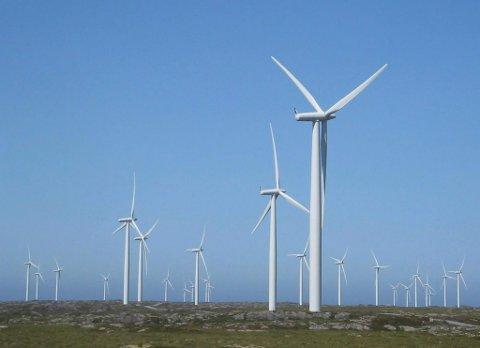 LO Ytre Sogn seier ne til utbygging av vindkraft. Bildet viser vindmøller på Smøla.