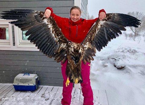 SKAL UTSTOPPES: Her holder Jan Juliussens datter, Sunniva Juliussen, opp ørnen. Omtrent slik vil finneren ha den utstoppet.