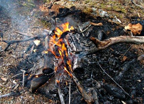 KAN SPRE SEG: Bålbrenning og grilling er de vanligste årsakene til skogbranner.