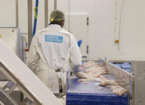 Torsken dominerer nå i leveransen i sju av råfisklagets kjøpsdistrikter, men er best betalt i Lofoten.