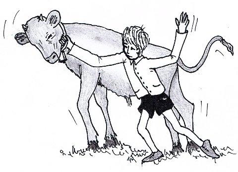 RODEO: Jon M. Tuvengs illustrasjon som viser hans og Knuts noe mislykkede forsøk på å emulere rodeo-cowboyer. Tegning: Jon M. Tuveng
