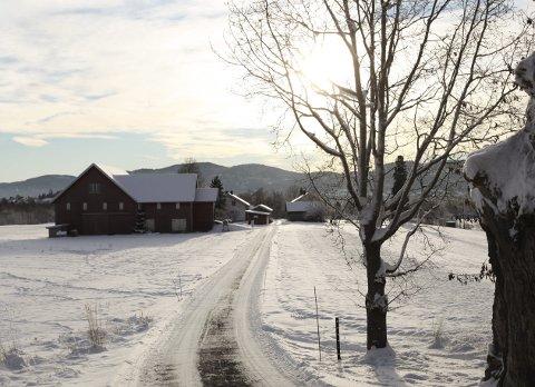 Turvei og tun: Striden dreier seg om veien som går gjennom Børstadveien 38 og 43.