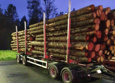 Denne tømmerbilen var 30 centimeter for lang og overlastet.