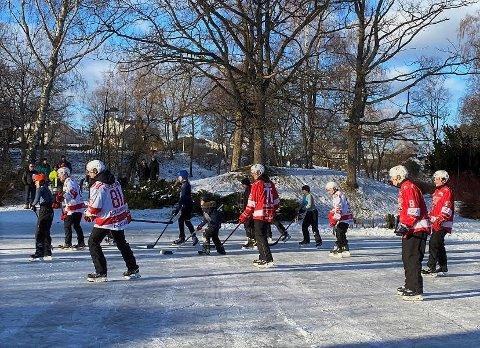 STORFINT BESØK: Det er ikke hver vinter dammene i Rosahaugparken får besøk av proffe ishockeyspillere.