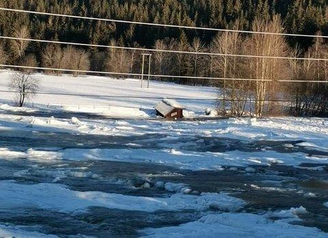 ISPROBLEMATIKK: Situasjonen i elva er ganske lik i dag, mandag, som den var søndag da bildet ble tatt. Foto: Privat