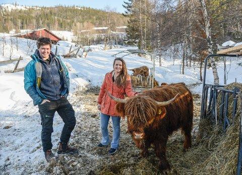 SATSAR: Jørgen Andrisson Kvam og Thea Sandsengen er i gang med ammekyr og har mange planer for livet på garden Kvam i åra som kjem.