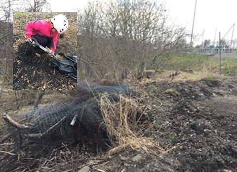 Tok ansvar: Ane Kirstine Kyed (9) var misfornøyd med det hun fant ved trærne og i naturen, som ligger like ved skolen. Etter funnet bestemte hun seg for å ta saken i egne hender.