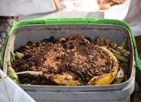 Ingen ekstra dunk, ikke en gang en grønn pose i sikte. Noen velger å kompostere matavfallet i egen hage.