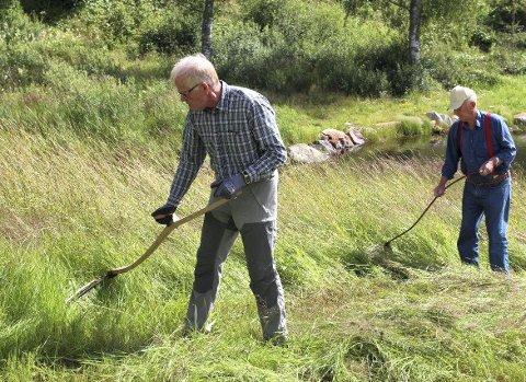 FØR I VÆLA: Finn Løkeberg (fremst) og Lars Woie brukte nyslipt redskap så både fuktig gras og jordrotter skvatt.