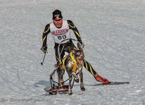 HUND: – Miljø og trimklasser er et tiltak for å få med flere i hundekjørersporten, sier Stein Grøndalen i Asker trekkhundklubb.