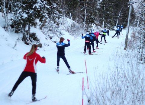 PÅ SNØ: Bildet er fra treningssamlingen i 2013 i Tärnaby. Nå drar løpere fra Mosjøen IL Ski og Halsøy IL Ski på samling igjen.