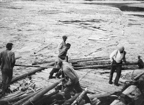 Forsjordio: Nærmest Benedikt Forsjord, til venstre Karl Forsjord, bak Benedikt Andreas Øksendal. Manuell innstramming av lensa med gangspel for å få ut tømmerstokkene fra bakevja i Forsjordio i 1920 årene. Foto: Otto Bugge