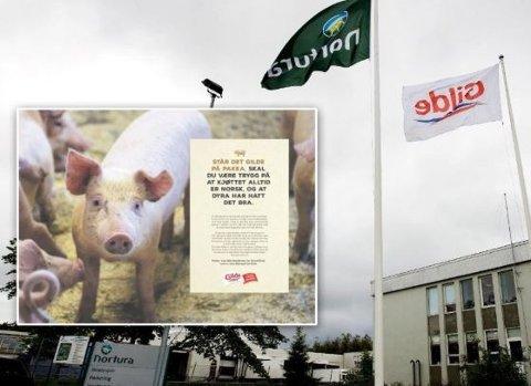 ANNONSEN: Flere blir provosert over at denne annonsen stod på trykk i landets største aviser dagen etter den rystende NRK-dokumentaren som viste dyremishandling fra en Nortura-leverandør.