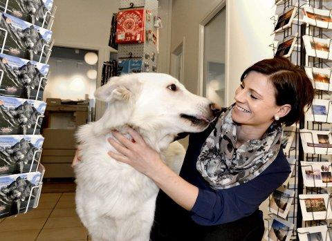 Kontorhund: Hunden Malik (2 år) er ofte med Agnethe Bjørkhaug på jobben. – Han er kontormaskoten vår, sier den nye regionansvarlige i Helgeland Reiseliv.foto: beate Nygård