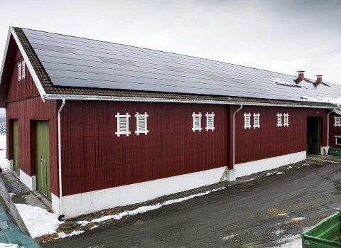 Solfangere og solceller: Gården har to anlegg, solfangere og solceller.