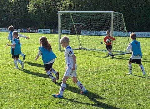 8-årslagene fra Søya og Bøfjorden/Bæverfjord inntar Leikarvollen Stadion.