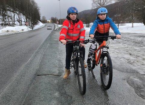 Brødrene Markus og Håkon Aune synes det er skummelt å sykle langs fylkesveien i Øvre Surnadal. – Bilene kommer fort, så det er bra om det blir gangvei snart, sier Markus.