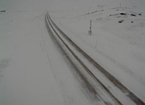 HEMSEDAL: Slik såg det ut på Hemsedalsfjellet, 1140 m.o.h, litt over klokka 12.00 søndag.