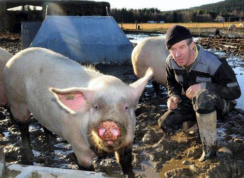 ØKOLOGISK: - Jeg gjør de tingene staten vil at jeg ska gjøre. Men jeg håper at vi kommer dit at markedet betaler den prisen maten er verdt - og koster å produsere, sier Heinrich Jung, økologisk bonde i Åsnes.