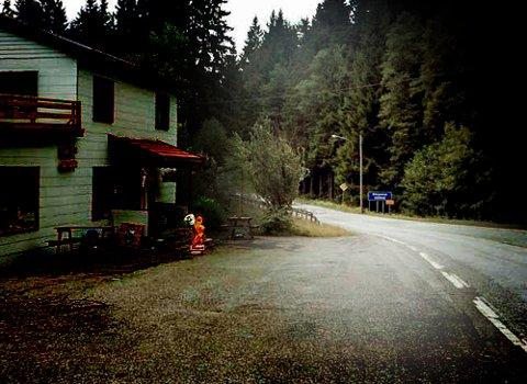 DENNE VEIEN: De to bilene med de tre kurerene kom inn i Norge over Holtet i Enningdalen.