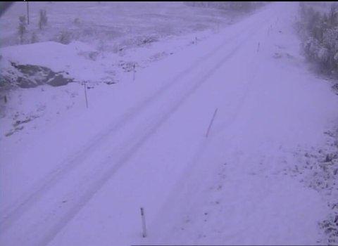 VINTER: Det er snø på Dagalifjell. Dette øyeblikksbildet er tatt halv åtte lørdag morgen.
