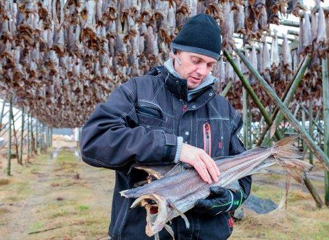NYTT: Olaf Johan Pedersen på Røst har etablert selskapet Froen AS som har kjøp, salg og megling av fisk er formålet med etableringen.