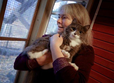 Kattehuset har omplassert 200 katter hittil i år. Her er frivillig ved Kattehuset, Astri Haug, med en av kattene som venter på et nytt hjem.