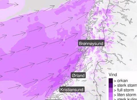 I ettermiddag blir det vindfullt i Trondheim og resten av regionen.