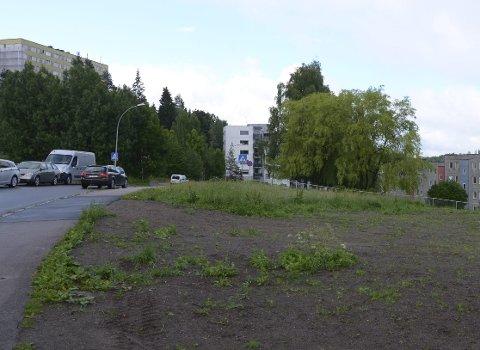 IKKE AVKLART: Det er ikke endelig bestemt hvor Bogeruds nye aktivitetspark skal ligge, men dette «ubrukte» området øverst i Paal Bergsvei er en het kandidat. Foto: Nina Schyberg Olsen