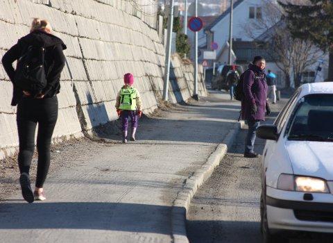 Borgtun Bydelsråd mener en senking av fartsgrensa er et første steg på veien til å virkelig gjøre Dramsvegen til den trivelige og grønne ferdselsåren som kommunen har vedtatt at den skal være.
