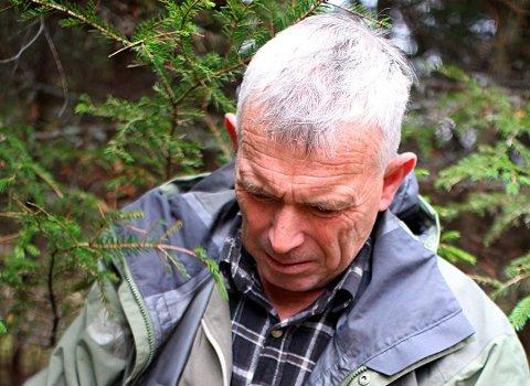 Skal avlive: Leder i viltnemnda, Jan Lie rykket ut med en gang han hørte om elgkua som angrep turgåer.